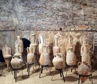 Musée d'Archéologie - Antibes 06