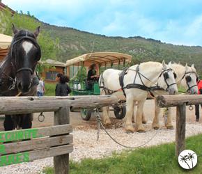 Réserve des Monts d'Azur