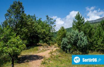 Parc de Roquevignon - Parcs naturels départementaux 06 Alpes Maritimes