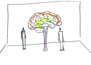 Mardi 9 mars 2021 : Le Cerveau